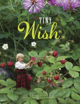 The Tiny Wish9780385379229_p0_v3_s260x420