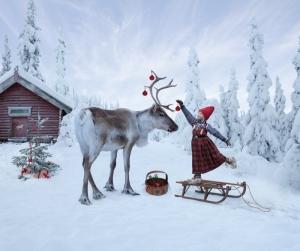 Anja ornamentTHE REINDEER WISH_@PER RBEIEHAGEN-21
